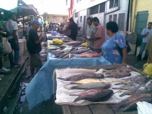 Suva Fish Market